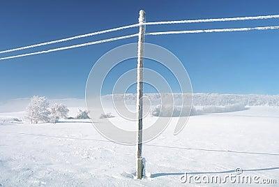 Winter empty landscape blue sky, snowy telefony lines