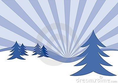 Winter firs illustration