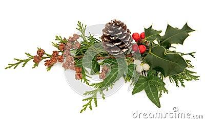 Winter Flora Decoration