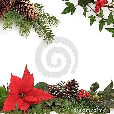 Winter-Flora und Fauna-Rand