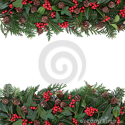 Free Winter Floral Border Stock Photography - 44351332
