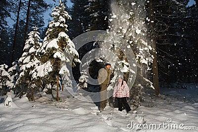 Winter fun in forest