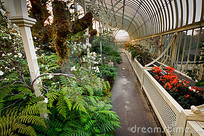 Winter Garden Stock Image - Image: 18614731