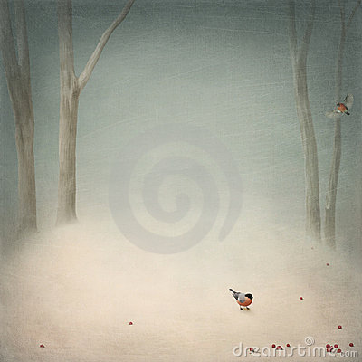 Free Winter Glade Royalty Free Stock Photography - 11838487