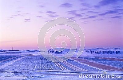 Winter grassland sunrise
