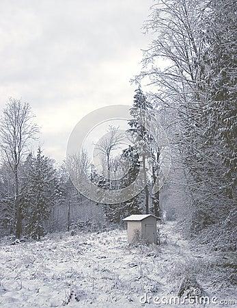 Winter-Halle