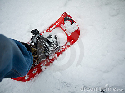 Winter Hiker - Snowshoeing