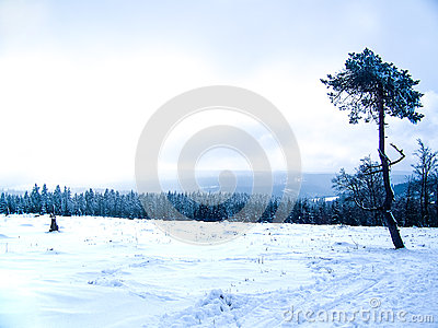 Winter Hill with snow on Winterberg