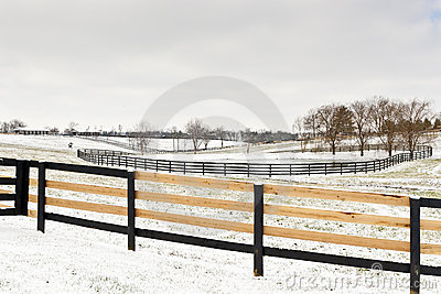 Winter horse farm scene with freshly fixed fence.