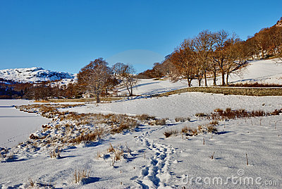 Winter Lake District Scene