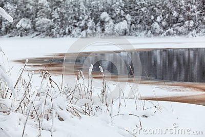 Winter lake shore with opened water in ice