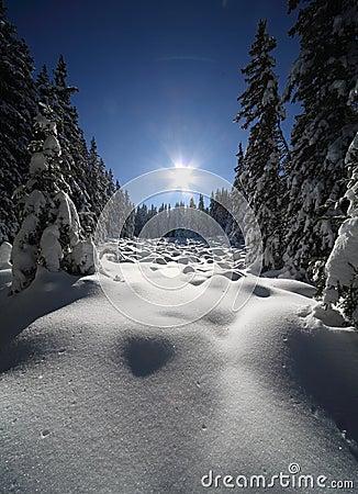 Free Winter Landscape Stock Photo - 18468180