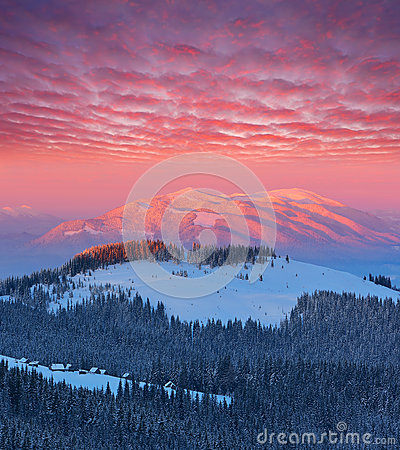 Free Winter Landscape At Dawn Royalty Free Stock Image - 62000516