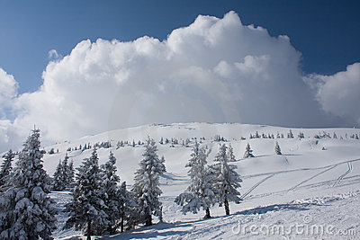 Winter landscape in Carpathians