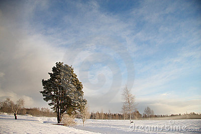 Winter landscape with dark clouds coming over sky