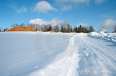 Winter landscape and firewood