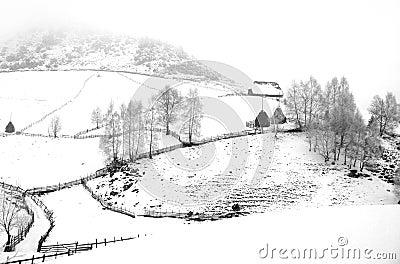 Winter landscape with haystacks