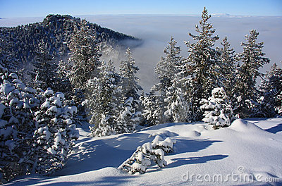 Winter Landscape. Ski resort Borovets, Bulgaria