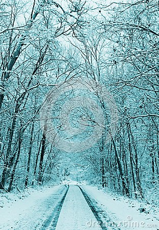 Free Winter Landscape, Snowy Forest And Road Royalty Free Stock Photos - 103288318