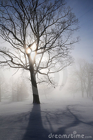 Winter Landscape with Sunburst