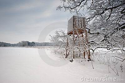 Winter landscapes