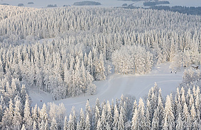 Winter lanscape in Finland