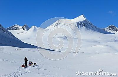 Winter in Lapland Stock Photo