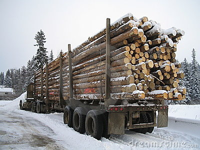 Winter logging load