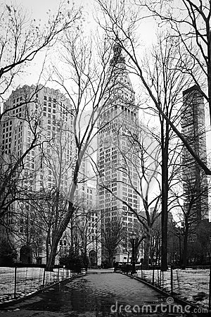 Winter in Madison Square Park - New York City