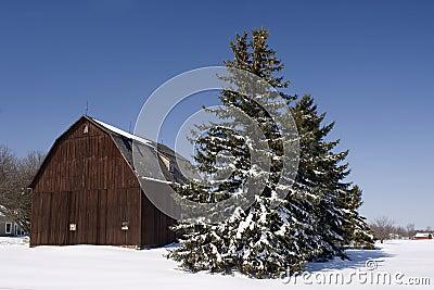Winter Midwest Farm Scene