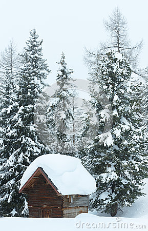 Winter misty mountain and wood shed