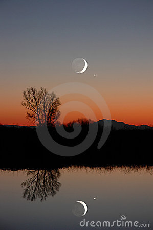 Free Winter Moon And Lone Tree Royalty Free Stock Images - 2361889