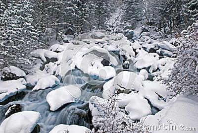 Winter mountain creek cascades and snowfall