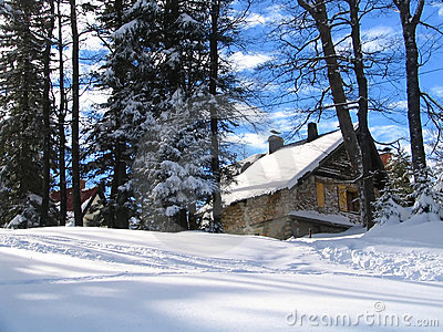 Winter mountain house and forest