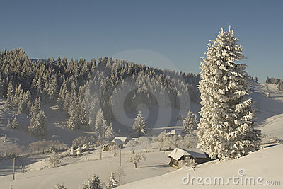 Winter mountain  Landscape