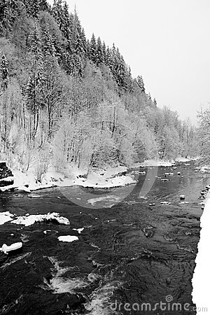 Winter mountain river in Carpathians