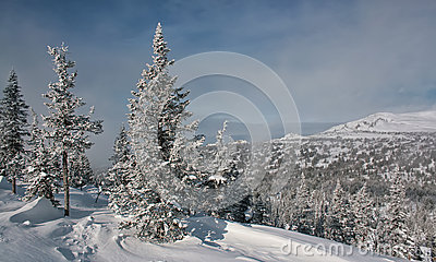 Winter in the mountains #006