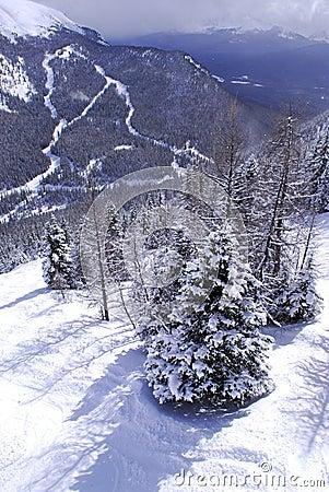 Free Winter Mountains Stock Image - 20852351
