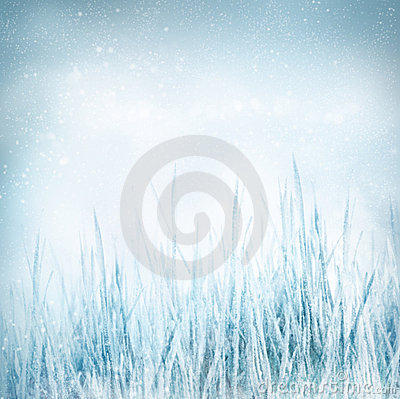 Free Winter  Nature Background With Frozen Grass Royalty Free Stock Photos - 22739968