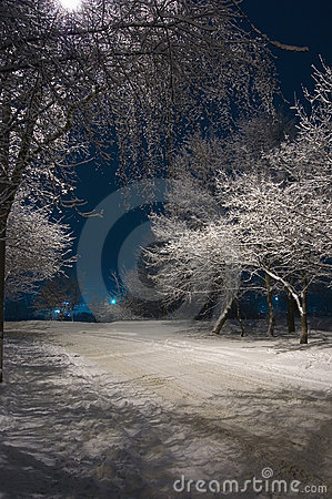 Free Winter Night Stock Photos - 1890703
