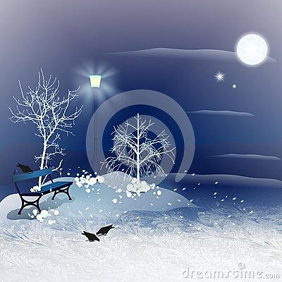 Free Winter Night Royalty Free Stock Photography - 35416077