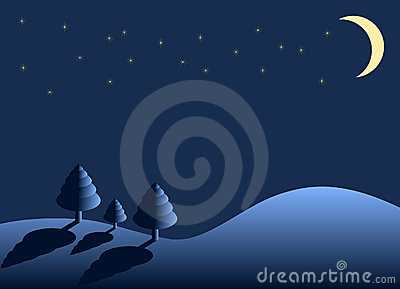 Winter night - landscape