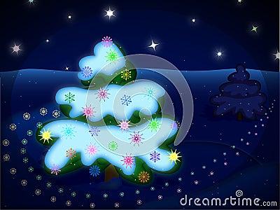 Winter night picture