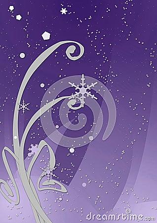 Winter Night - Purple