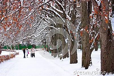 Winter park.
