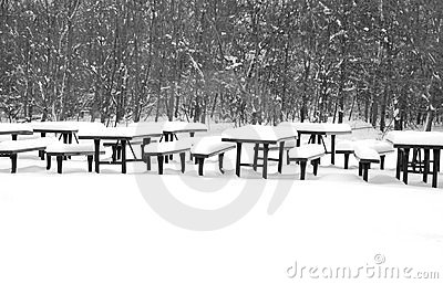 Winter picnic