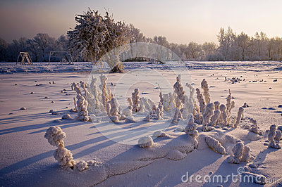In winter, on the playground