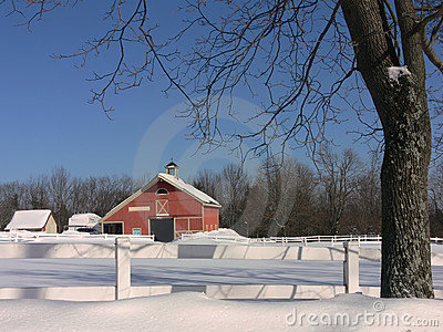 Winter: red barn with tree in snow