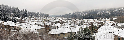 Winter in Residential Suburban City