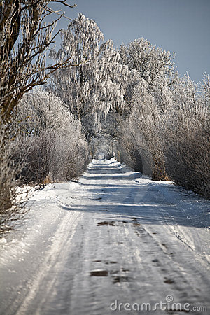 Winter road with frosted trees and rime